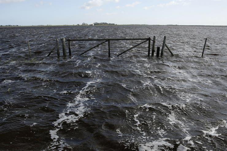 Inundaciones, sequías, incendios y heladas: un clima impredecible jaquea al campo