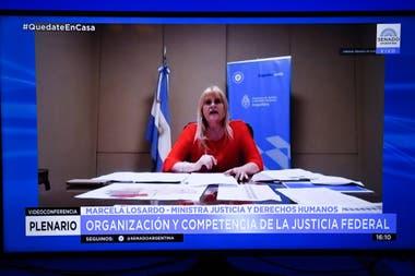 Marcela Losardo, durante su exposición en la sesión virtual