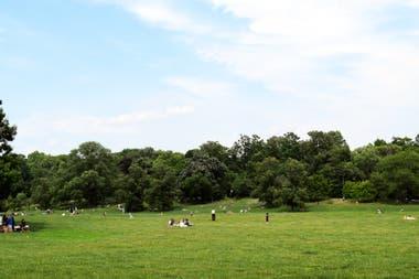 El verde de Prospect Park en Brooklyn