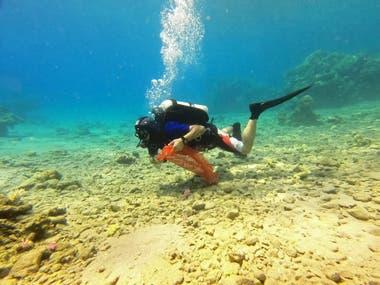 Buzos israelíes participan en una limpieza submarina en el Mar Rojo frente a la ciudad turística de Eilat, en el sur de Israel