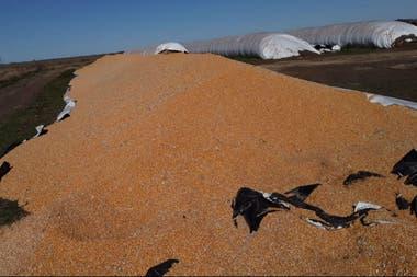 El silobolsa con maíz destruido en Italo, Córdoba