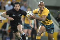 Lo que hay que saber antes del gran choque All Blacks vs. Wallabies