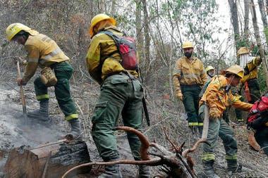 Los incendios forestales en Jujuy ya afectaro más de 15 mil hectáreas