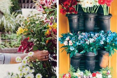 Algo Huele Bien Florerías La Nacion