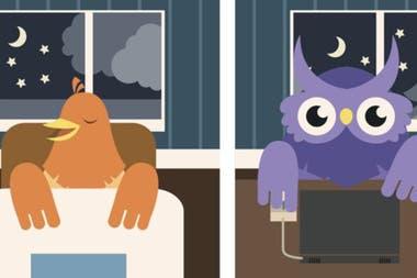 Para poder disfrutar de un buen descanso, primero debes saber si eres alondra o búho.