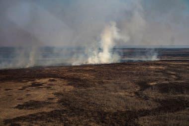 Los incendios se dan en un contexto particular, la escases de lluvias y la bajante más aguda de los últimos 60 años del río Paraná