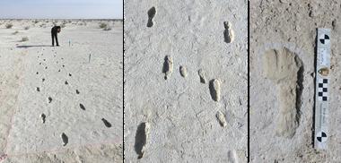 Un especialista estudia las pisadas hechas en el lecho seco del Lago Otero