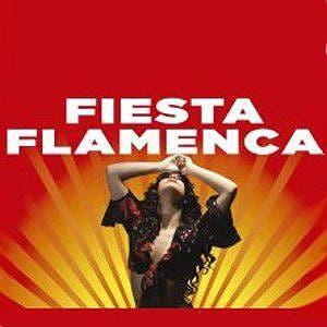 Afiche de Fiesta flamenca